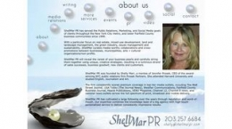 Snapshot - website shellmarpr.com